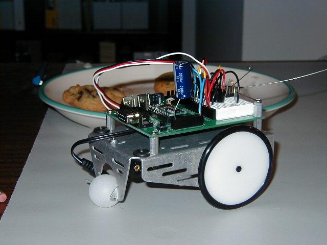 picture of a robot: Cyborgia